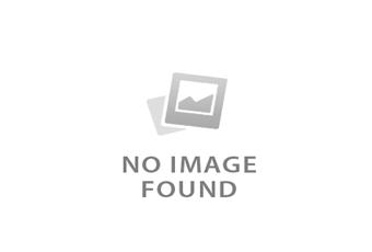 Honda Rebel 500 Midnight Blue Limited Edition